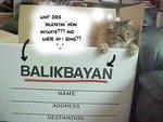 Balikbayan_
